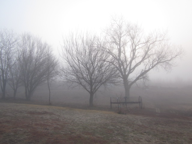 I must admit to not taking any pictures on our hunting trip, so I'll just include this picture of a dense fog.  I hope it'll do.
