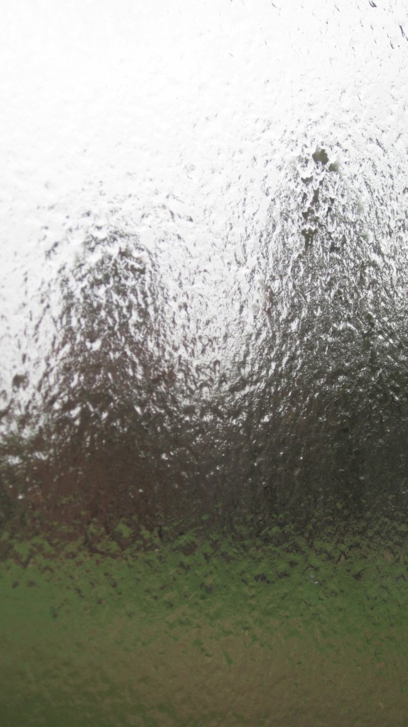 It is mid-April and we are in a winter storm warning.  This is ice coating our windows.  We are entombed in ice.