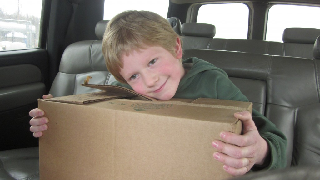 Little Mack is all smiles and he holds the boxful of chicks on the way home.