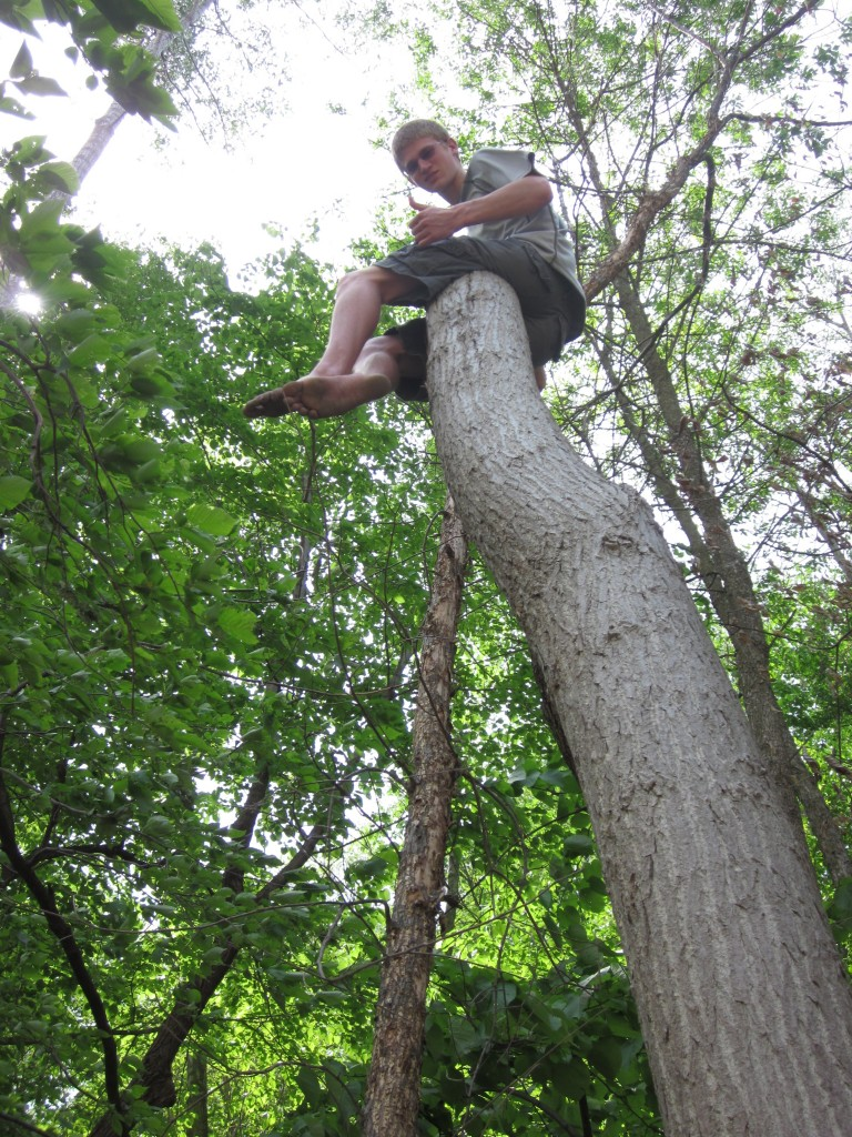Timothy got bored with the hunt for fungus and did what he does when he's bored:  he started climbing.
