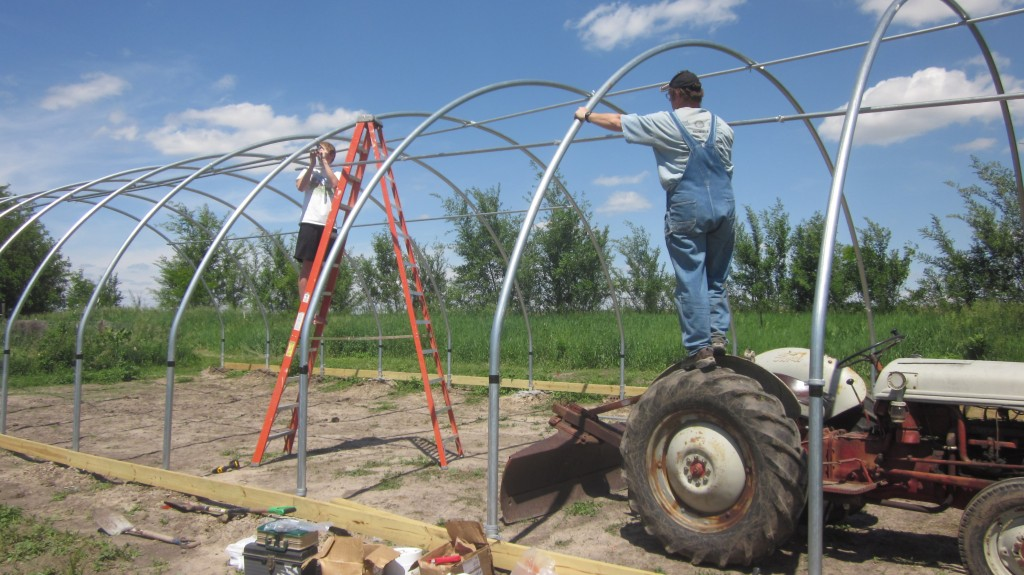 The tractor makes a passable ladder, in a pinch.