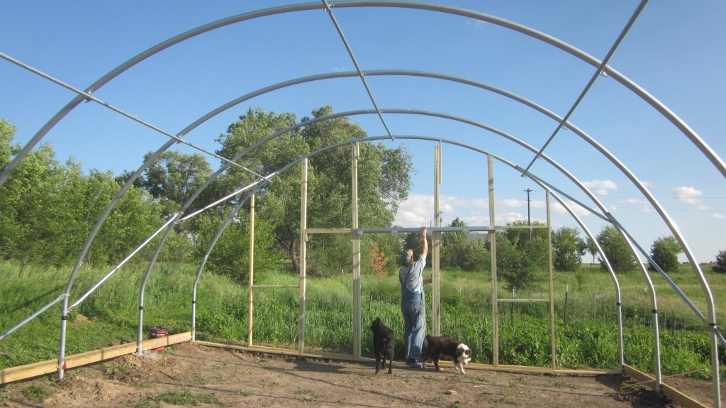 Hoophouse Phase 3