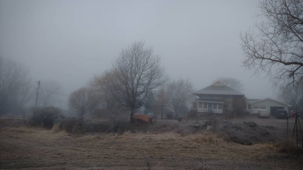 grey landscape with house