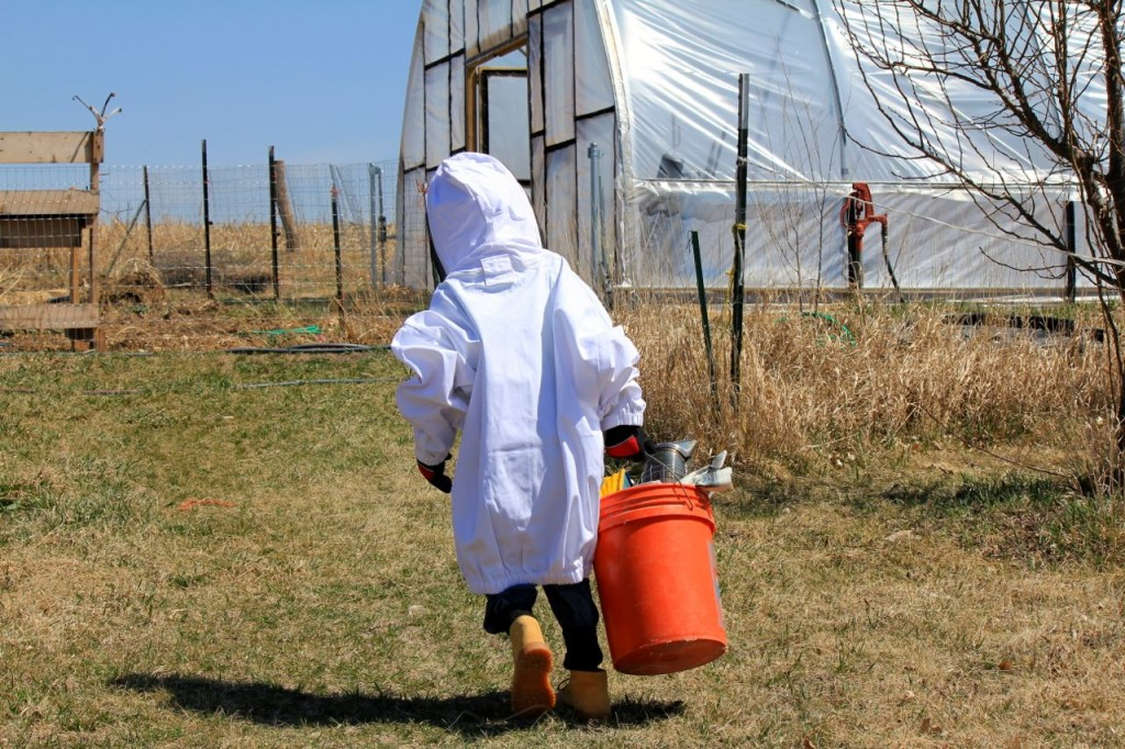 Little Mack has been interested in beekeeping ever since Bryan bought a second bee jacket for him to use. It's not his size. He doesn't care.