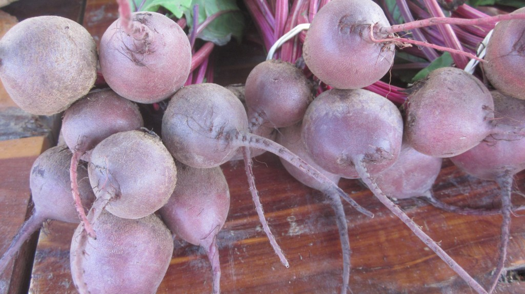 These gorgeous beets were for sale at our market.