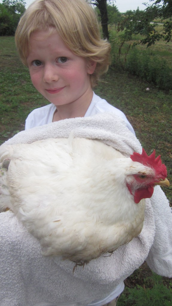 Little Mack is holding one of the Cornish Cross roosters, which weighed in--dressed--right at 8 lbs.  My son decided it was the End of the Line for his bangs, and he chopped them off.