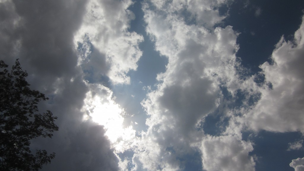 Sometimes, all you have to do to have your breath taken away, is to look UP.