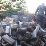 Lovely woodpile