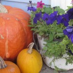 14 Things I Love About October