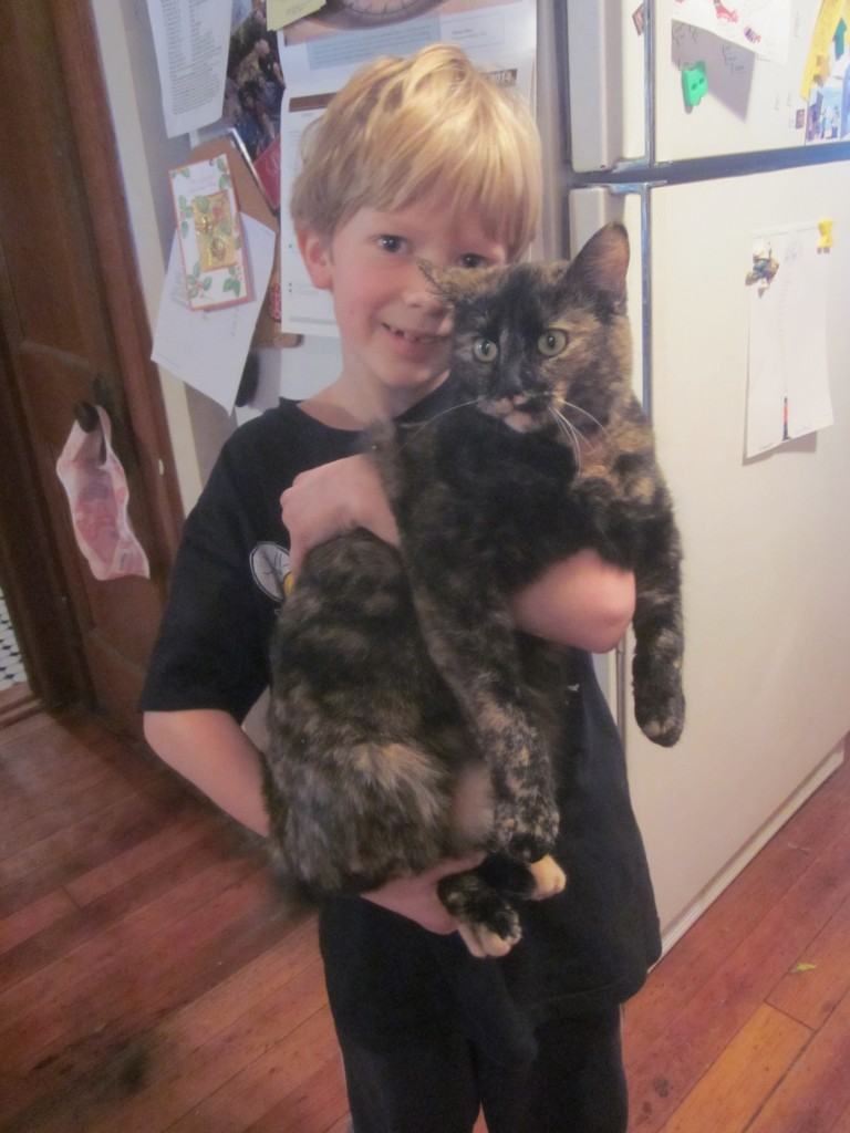 I don't know about the cat, but the big smile on my son's face is possibly due to the fact that I mentioned making pie today.