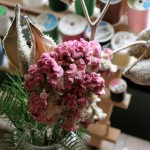 How to make pretty displays for the holidays out of dead stuff . . .