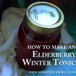 Elderberry winter tonic recipe and a giveaway!