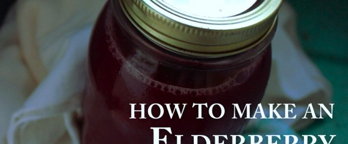 Anti-Viral Elderberry Winter Tonic Recipe: really, it's a no-brainer!