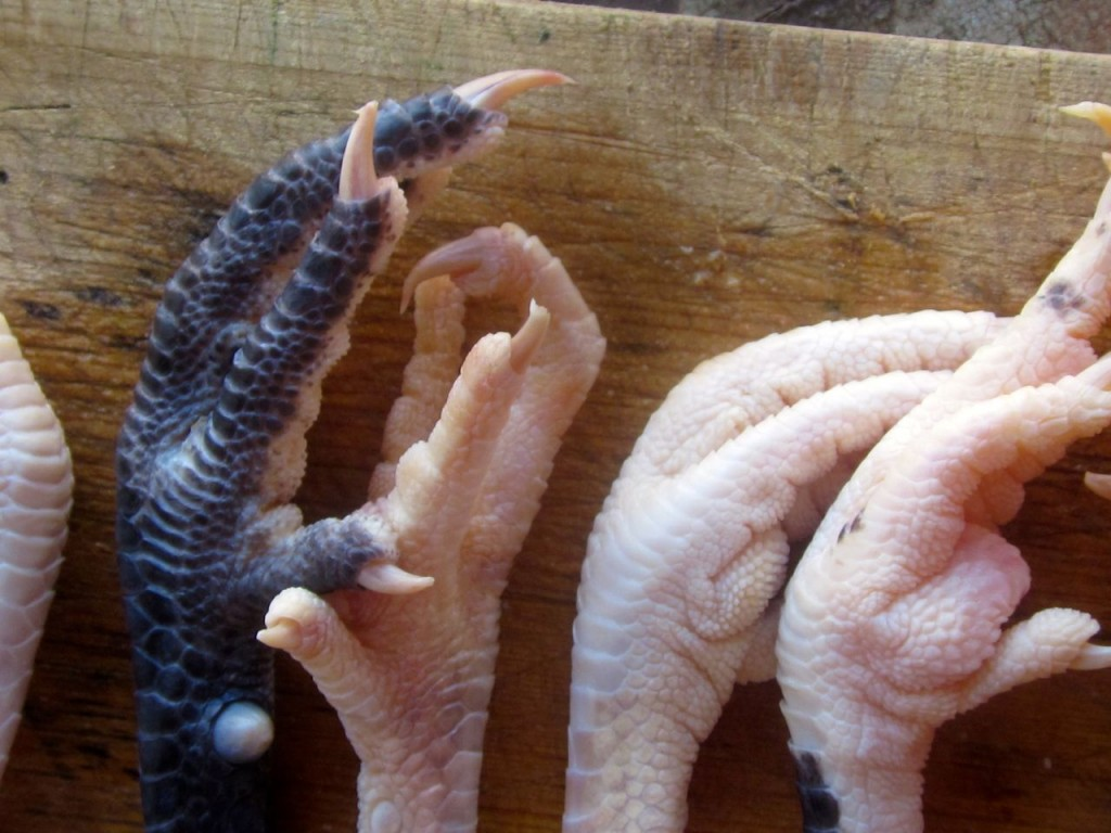 how to clean chicken feet