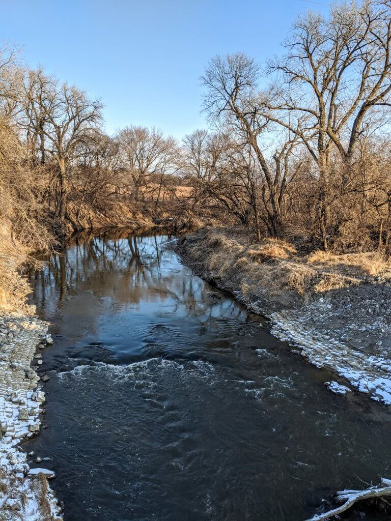 creek land with trees, in winter