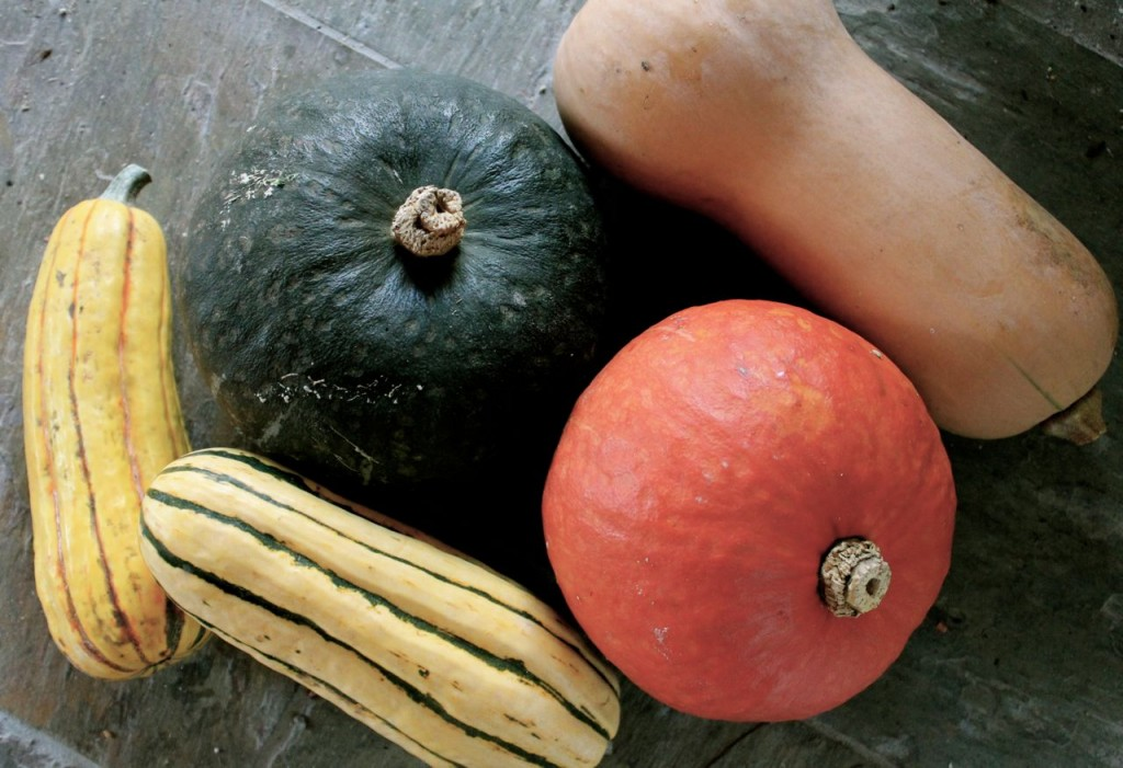 From left, clockwise: delicata, kobocha, butternut, kobocha, delicata.