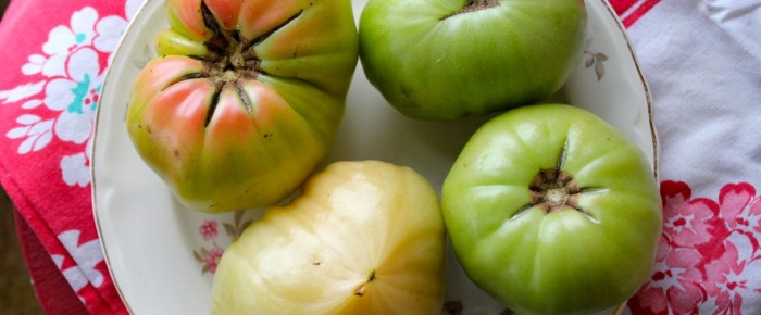 Fried Green Tomatoes: a healthy, cleaned-up recipe!