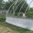 Building a hoophouse: a light at the end of the (high) tunnel