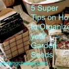 5 Super Tips on Organizing Seed Packets: a lovely, necessary chore