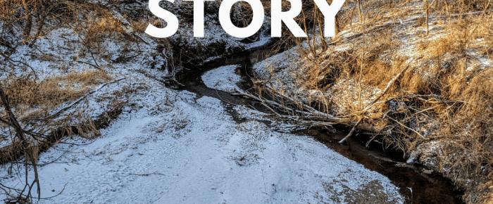 Juniper's Story