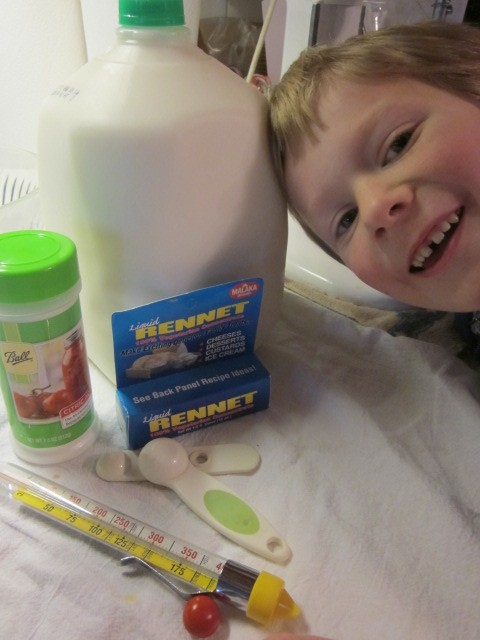 Little Mack mugs with the cheese-making ingredients.