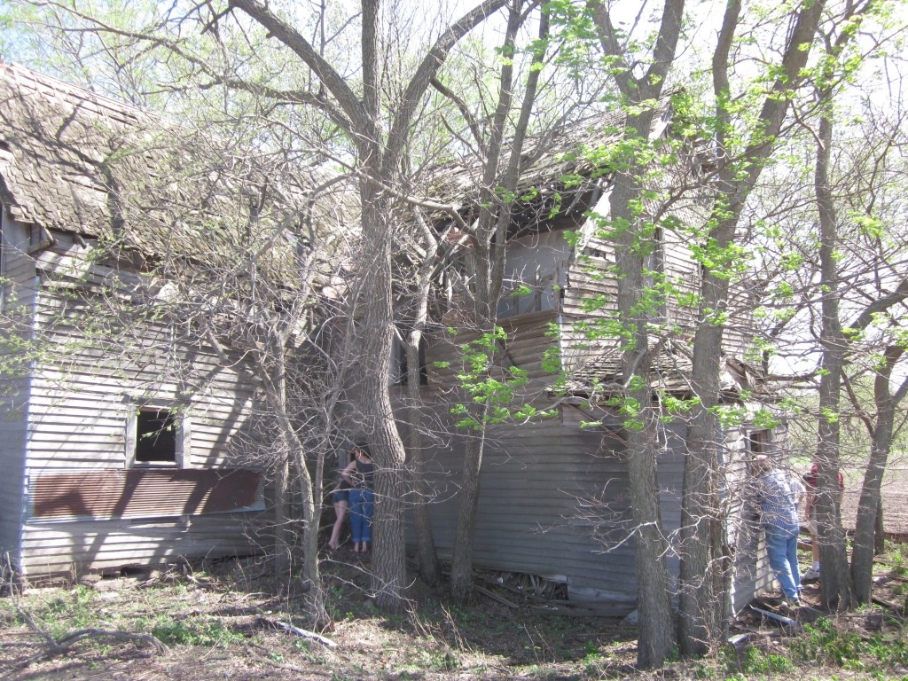 You can see on the back view how the trees are beginning to lift the house off its foundation.