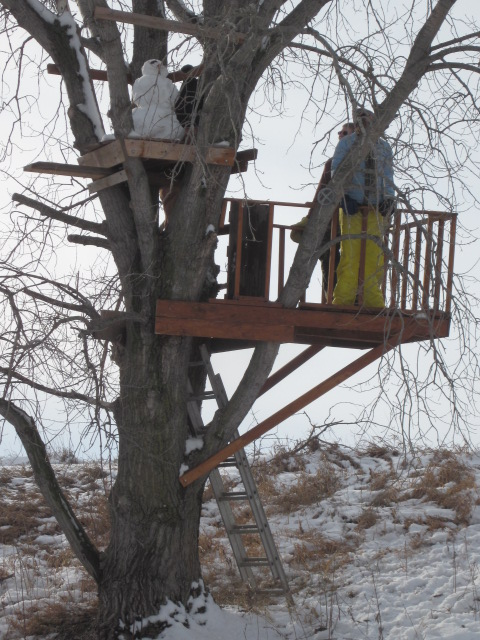 "Here is the finished tree house, which is even getting use during the winter!  The snowman is the only one brave enough to get up into the ""Eagle's Nest."""