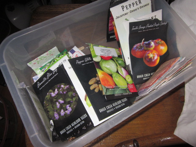 Here are some leftover seeds from last year's garden. Just looking at them gives me shivers!