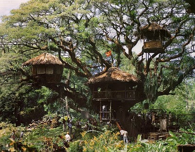 Here is THE treehouse to beat them all:  that of the Swiss Family Robinson.