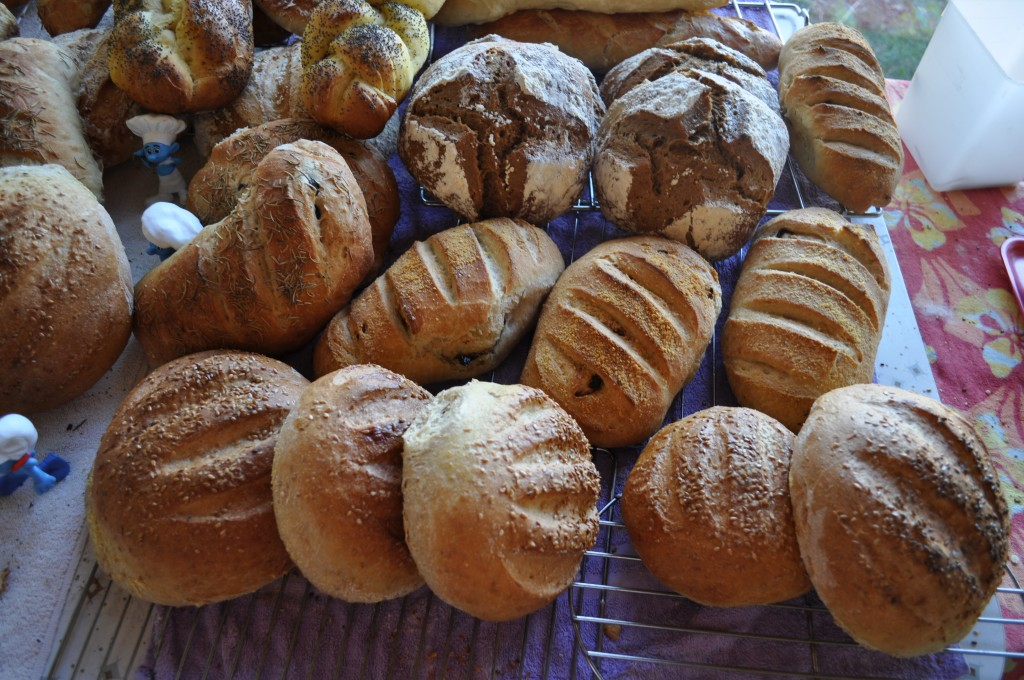 "All these breads and more can be made with the ""bucket dough"" method!"