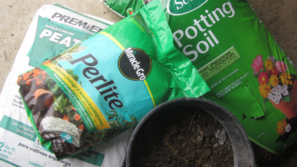 Here are the raw ingredients for my seed-starting mix: peat moss, potting soil, perlite, and well-aged manure or compost (in the bucket).