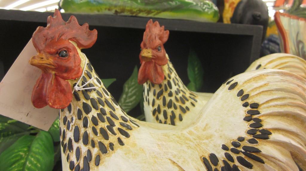 chickens, chickens, chickens!