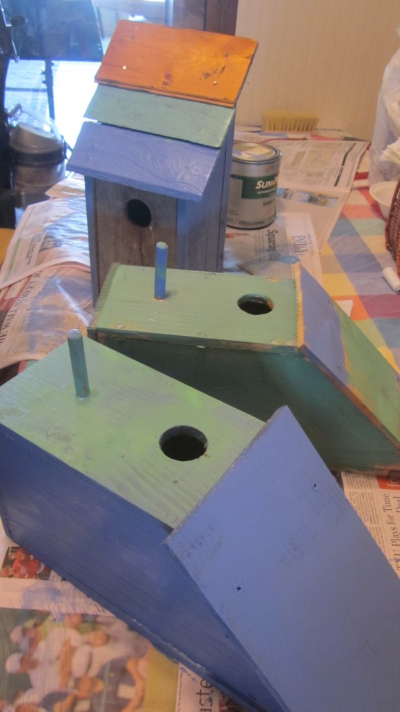 My dad surprised me by bringing these bluebird houses out to me a few days ago.  Little Mack and I painted them--mostly blue, of course.