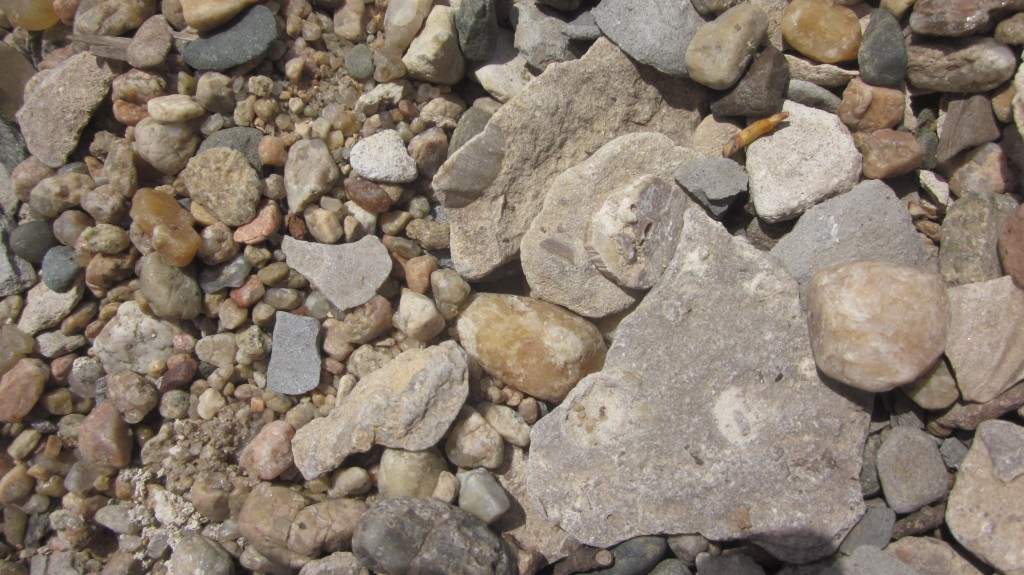 The rocks along the banks of the river are so pretty.