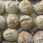 """Guest post on """"What's To Eat?"""" all about my lovely buns!"""