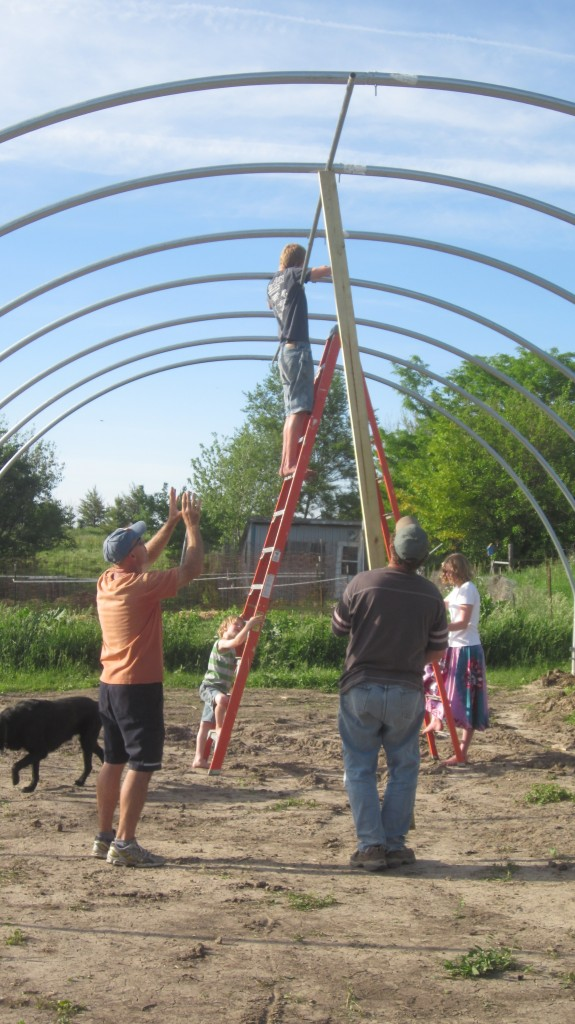 It takes a village, apparently, to install a purlin.