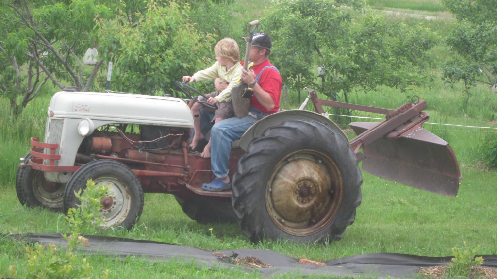 Here's my baby--gulp!--learning how to drive the tractor on his Papa's lap.