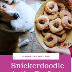 Why the Snickerdoodle is the perfect cookie: 8 reasons & a pecan addition