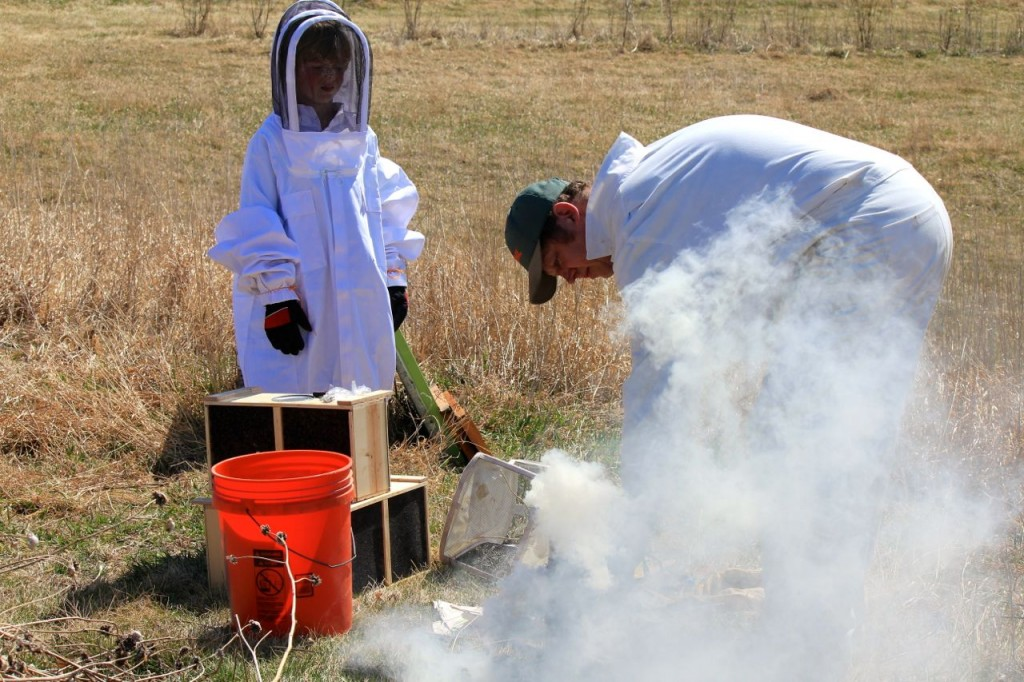 Here Bryan puffs smoke into the boxes of bees, which will help them stay calm as he messes with them.