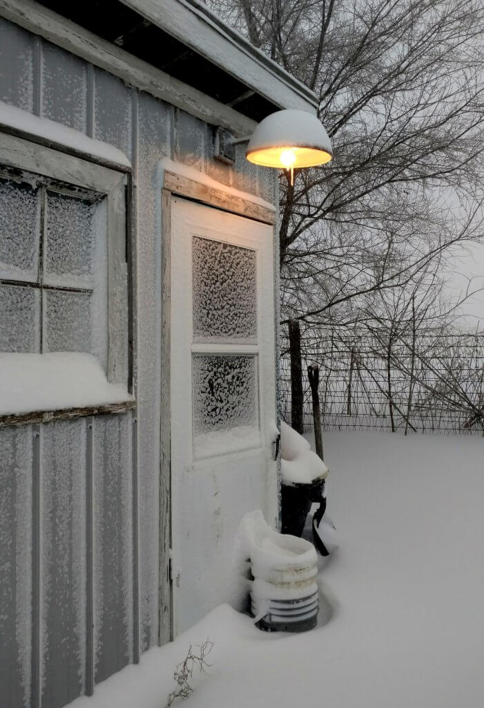 front of chicken coop covered in snow