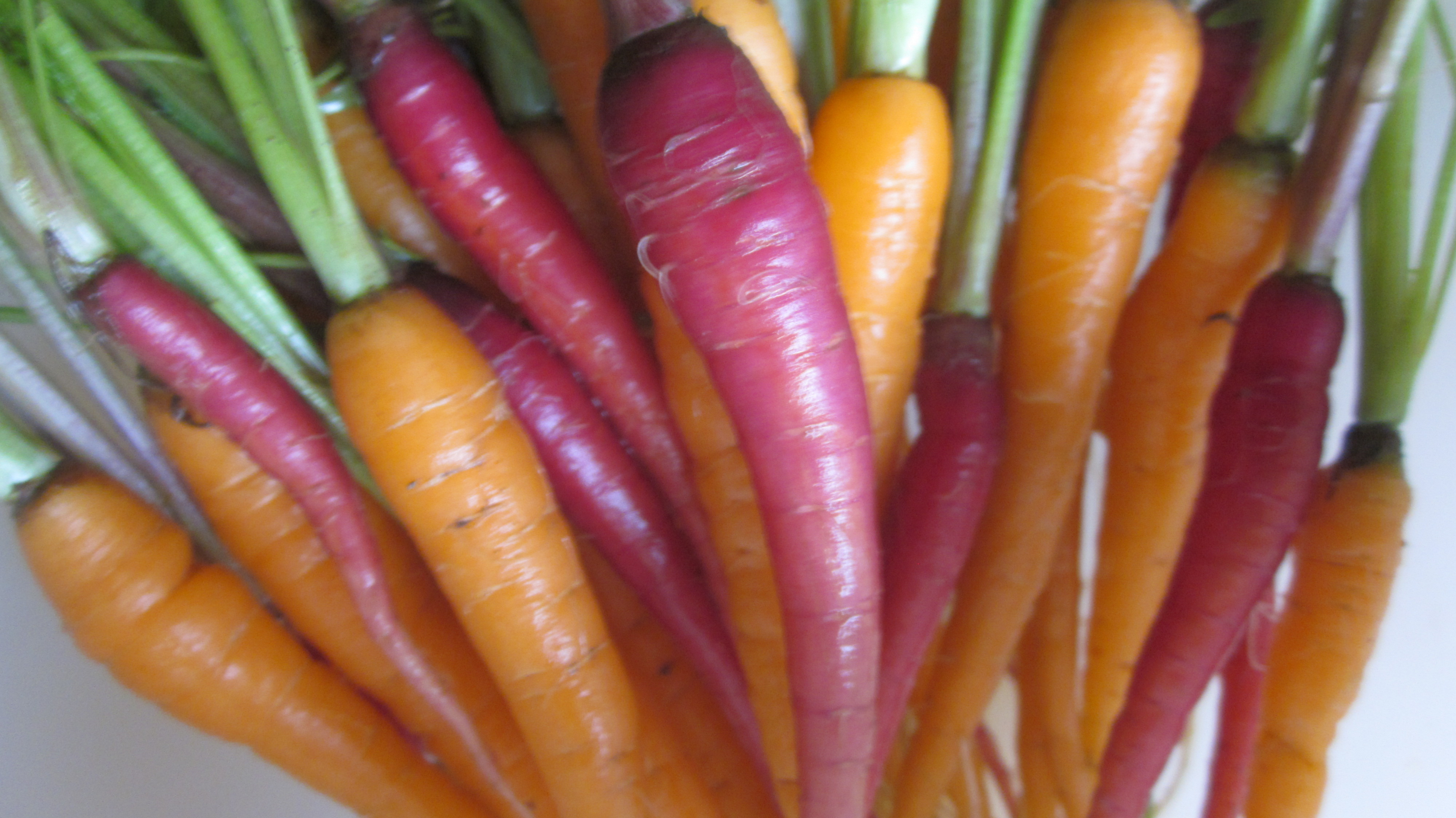 To Thin or Not to Thin Your Garden Veg . . .That is the Question