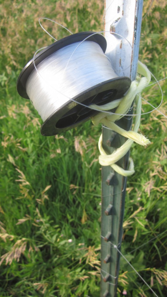 I keep my extra fishing line where I can grab it easily, tied to one of the t-posts in my deer fencing.