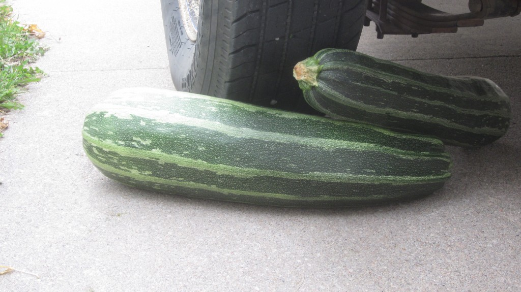 A pile of big zukes can be a very effective wedge to keep the trailer from rolling away.