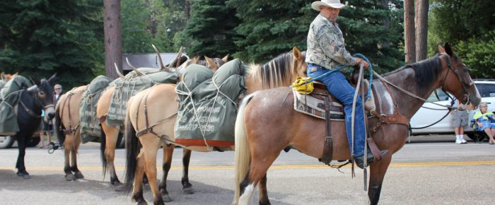 """Wyoming Vacay Photos, Tales, & new life slogan: """"Just hang on and pray"""""""