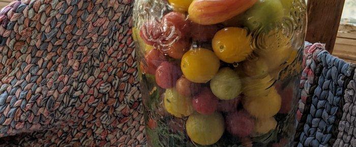Fermented Cherry Tomatoes: ooh la la!