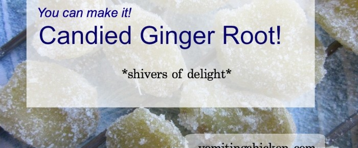 Candied Ginger Root: Easy-to-make, wildly nutritious indulgence!