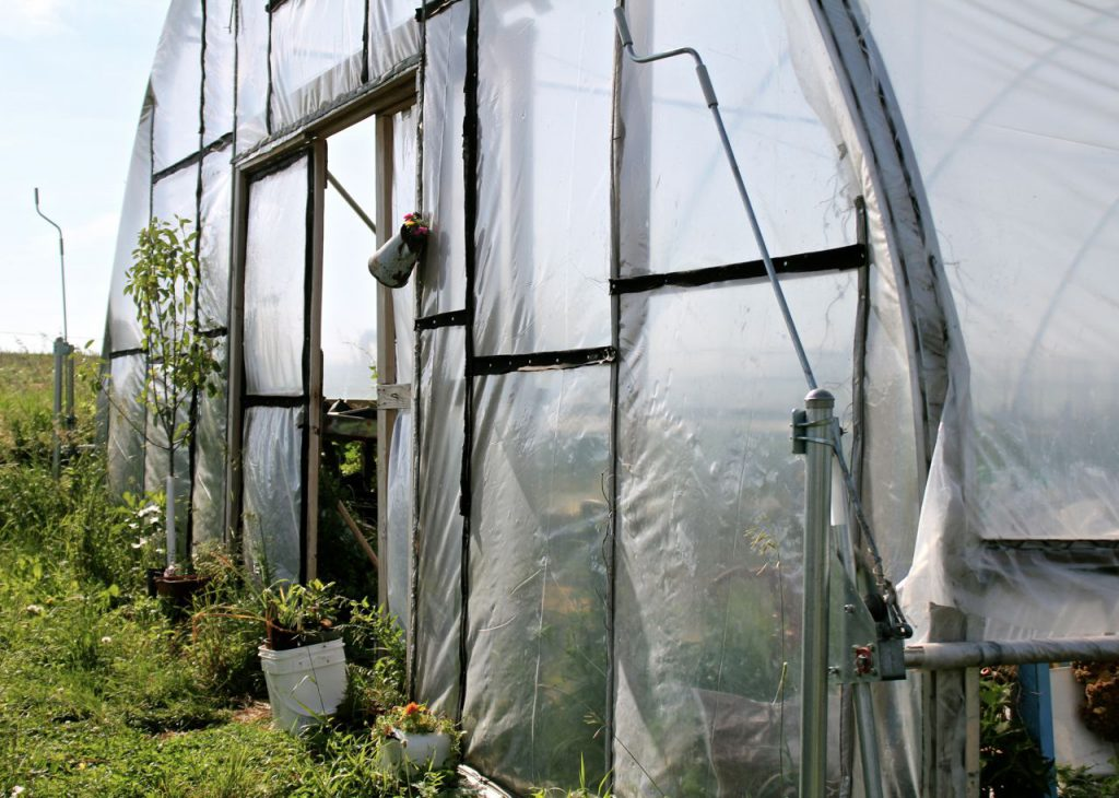 Welcome to my hoop house!