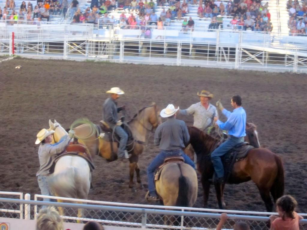 horses:rodeo