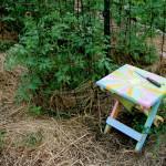 My garden, July 6