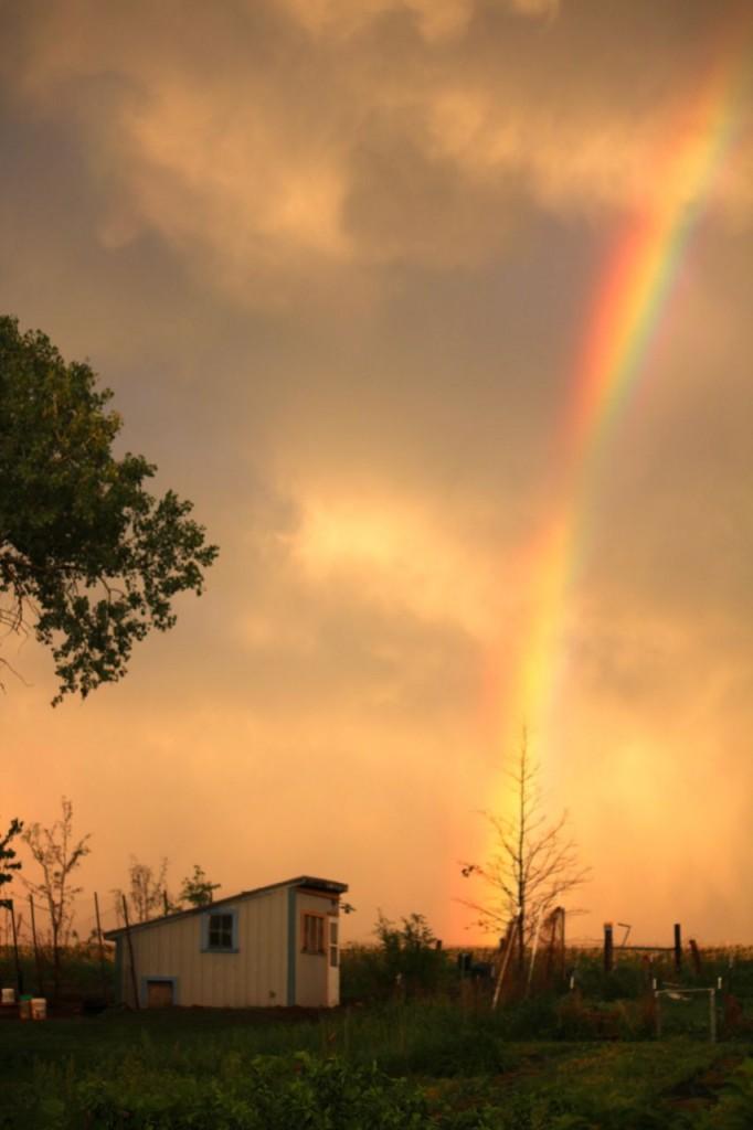 rainbowcoop
